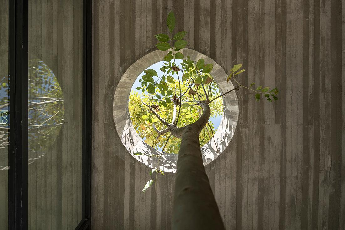 Les arbres existants ont été protégés et intégrés à la construction de cette maison familiale située dans la banlieue de Quito.